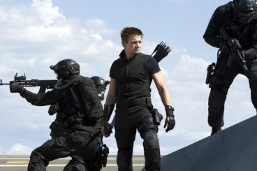 Hawkeye perched