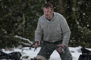 Liam Neeson stars in