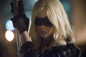 Arrow - Canaries - Caty Lotz Canary