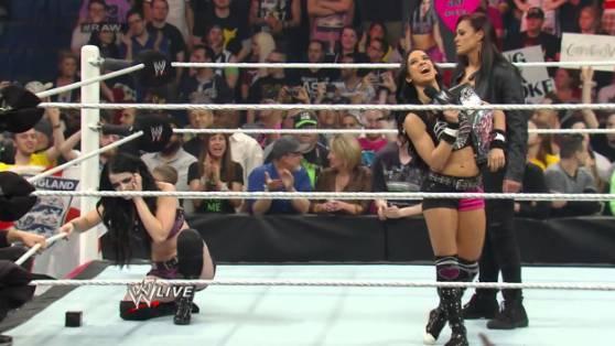 Best of Raw Smackdown 2014 -paige-vs-aj-lee-divas-championship