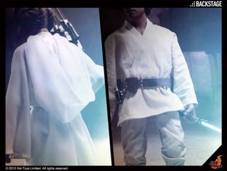 Hot Toys Star Wars - Princess Leia and Luke Skywalker