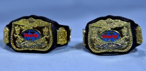 Yokozuna figure review Hall of Fame -tag team belts