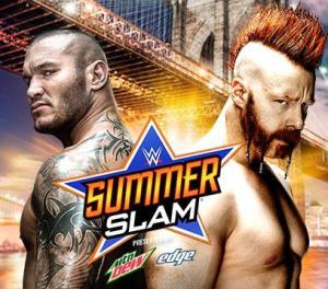 Summerslam 2015 - Orton vs Sheamus